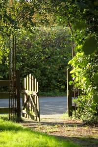opracowanie lektury tajemniczy ogród