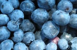 streszczenie na jagody