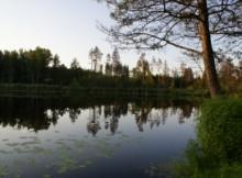 wiersze anna świrszczyńska